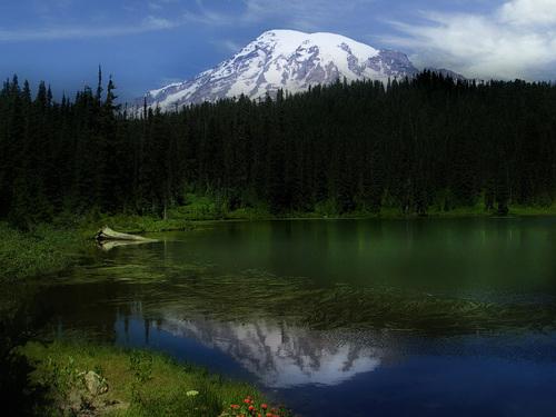 Le Mont Rainier©GordonCampbell