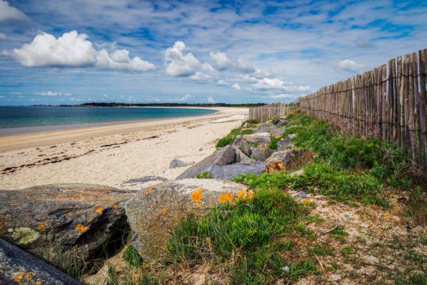 Le Morbihan lance son startup contest Crédit :123RF
