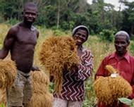 Développement durable. L'expression est explicite. Donner aux populations locales les aides nécessaires au projet de campement à Diari en Guinée.