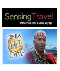Des nouvelles du Chili avec Sensing Travel, bureau commercial et de développement de Terra Chile