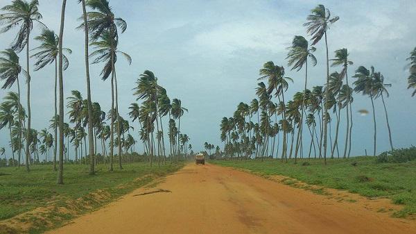 Le Bénin délivrera le visa Spécial Touriste à l'entrée au pays - Crédit photo : benin-tourisme.com