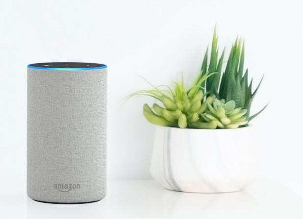 Amazon a annoncé officiellement l'arrivée d'Echo et Alexa en France en 2018 - DR Amazon
