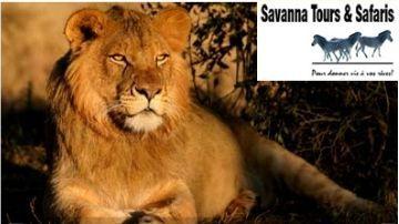 Savanna Tours propose pour les familles et groupes des safaris privatifs Tanzanie, accompagnés en français