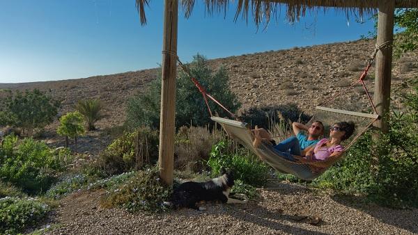 Hausse des entrées touristiques de +28% en février 2018, en Israël - Crédit photo : Office National Israélien de Tourisme