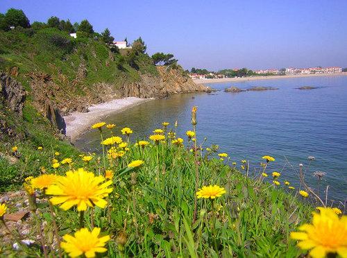 La France est une destination prioritaire pour 7 Français sur 10 - Crique de Porteils à Argelès sur Mer - Photo DR