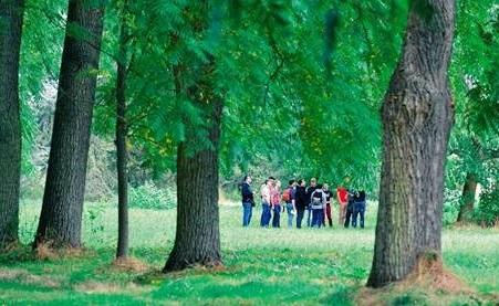 Arboretum de Versailles-Chèvreloup ouvre sur 200 hectares, soit 130 hectares en plus - Crédit photo : Arboretum de Versailles-Chèvreloup
