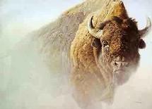 Outre la préservation de sites où vivent d'ores et déjà cerfs, biches, sangliers, chamois, renards et une centaine d'autres espèces.