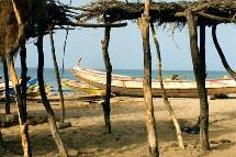 Après 820 000 touristes en 2004, le Sénégal devrait terminer l'année 2005 en atteignant les 900 000 touristes, dont 50% provenant de la France.