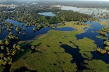 Le parc naturel Kopački Rit- DR:Goran Šafarek/ONT Croatie