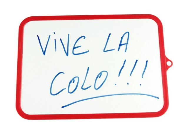 Voilà maintenant que les organisateurs des colos de vacances commencent à s'insurger, eux qui étaient dérogés d'obligation d'immatriculation tourisme depuis des lustres - DR : alain wacquier-Fotolia.com