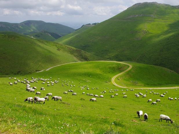 Pays-Basque ©PSaint-jean / ATR