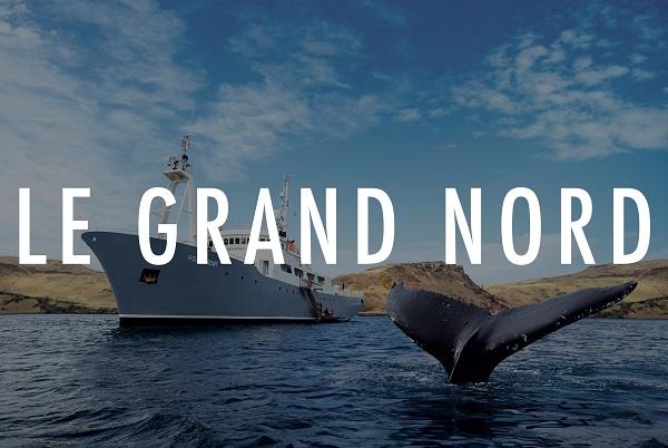 """TMR propose une croisière """"Safaris Baleines et Aurores Boréales"""" - Crédit photo : TMR"""