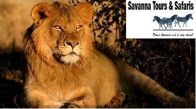 Savanna Tours & Safaris : Programmes & tarifs groupes Afrique du Sud saison 2011 au départ de toute la France