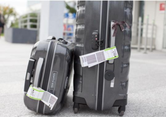 En partenariat avec la startup Eelway, Aéroports de Lyon et Rhônexpress lancent, un nouveau service de livraison de bagages - DR