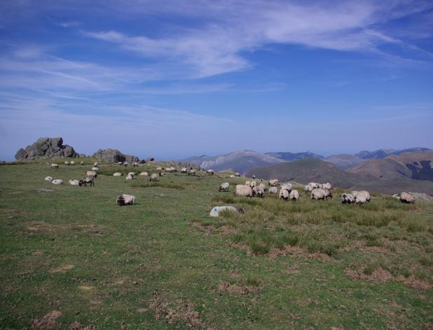 Le Pays Basque livre ses identités multiples constituées d'architecture typique, de sports insolites, de paysages verdoyants et d'excellente gastronomie campagnarde - DR : J.-F.R.