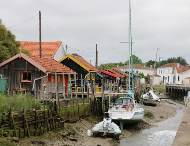 Du secret des huîtres à ceux des sentinelles de Brouage, le bassin de Marennes est prolixe en surprises - DR : J.-F.R.
