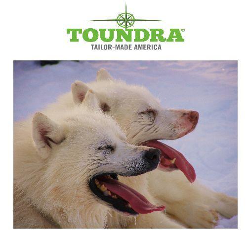Le groupe Toundra Windigo vous propose une découverte authentique de l'hiver Québecois en séjournant chez un vrai trappeur