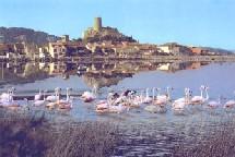 Gruissan : 2èmes Rencontres nationales du Tourisme de Terroir®