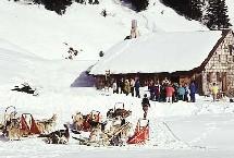 La Compagnie des Alpes : un comité consultatif d'actionnaires