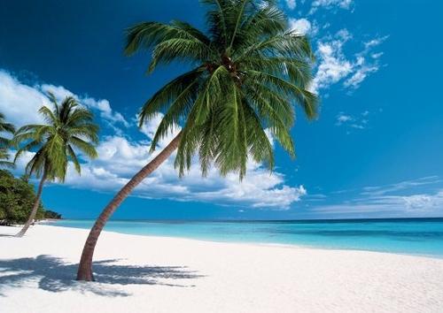 Destinations soleil : il reste encore du stock pour les vacances de Noël