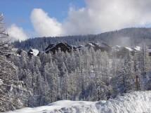 Risoul/Vars : La Forêt Blanche vise 3000m d'altitude