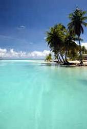 cht'i paradis sur lagon...