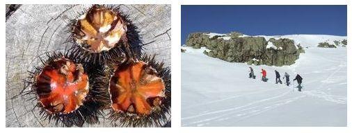 Corse Publitour Voyages : Escapade hivernale en Corse Terre/Mer/Auberge