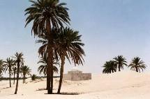 La Tunisie élue à la présidence de l'OMT