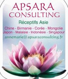 APSARA CONSULTING