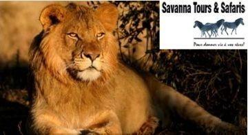 SAVANNA TOURS & SAFARIS: Programmes et circuits Burkina Faso Groupes 2011 départ France, Suisse et Belgique