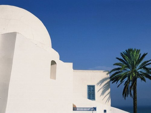 Relance Tunisie : comment les pros se préparent à la relance