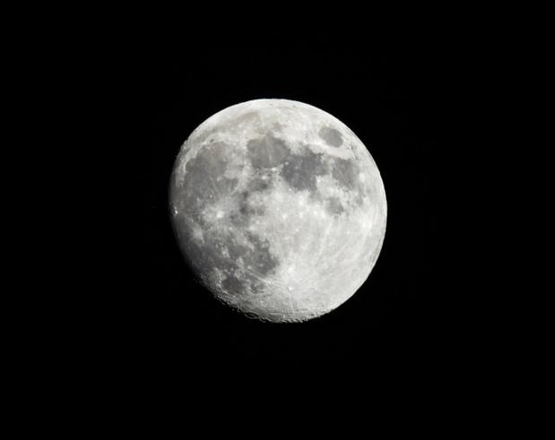 SpaceX annonce avoir signé son premier vol commercial vers la lune avec un particulier. Il s'agit d'un homme d'affaires japonais. - Photo Depositphotos Feverpitch