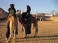 Algérie Tours