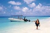 Taj Denis Island Seychelles : offres spéciales aux agences de voyages