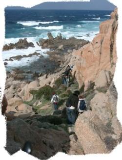 De la randonnée aux sorties du dimanche, les les activités proposées par le CE sont nombreuses et largement pratiquées