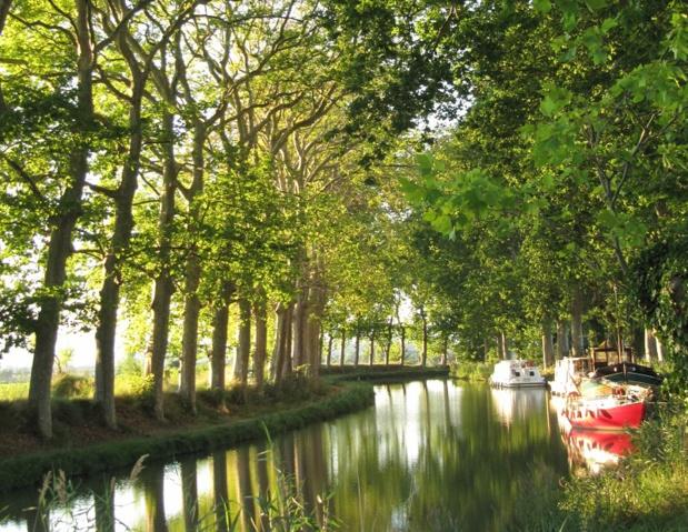 Le Canal du Midi attire chaque année une clientèle internationale (70%), avec près de 10 000 passages de bateaux et 1 million de personnes - DR : Creative Commons