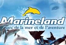 Marineland à Antibes : 2 groupes espagnols rejoignent la Cie des Alpes