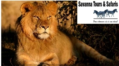 Vous recherchez un receptif francophone en Tanzanie et au Kenya pour sauver votre saison été -automne 2011 ?