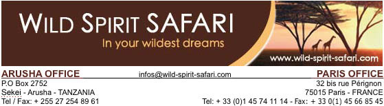 WILD SPIRIT SAFARI