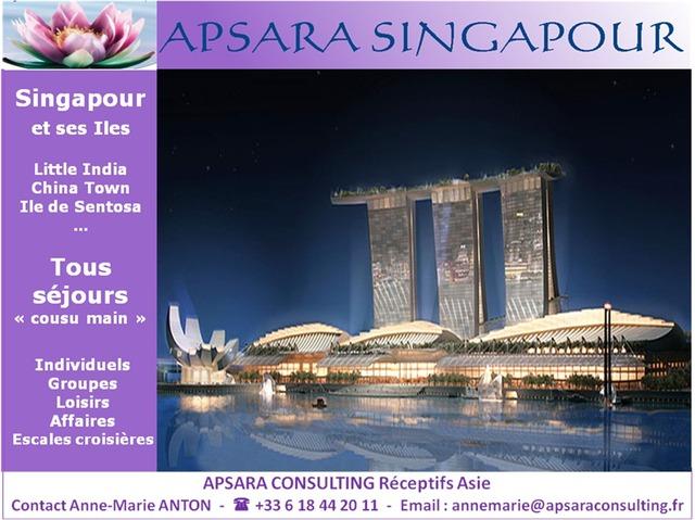 APSARA CONSULTING: SINGAPOUR ET SES ÎLES
