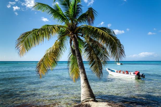 85 000 touristes ont visité la Martinique avec Airbnb en 2018 - Depositphotos ankamonika