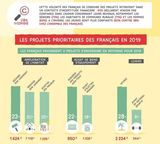 L'infographie de Cofidis sur les projets des Français en 2019 - Crédit photo : Cofidis