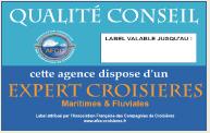 """L'AFCC revalorise la labellisation """"Expert Croisières"""""""