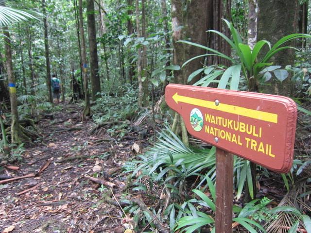 Panneau d'indication au milieu de la forêt