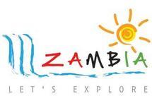 Zambie : un nouveau logo pour l'office de tourisme