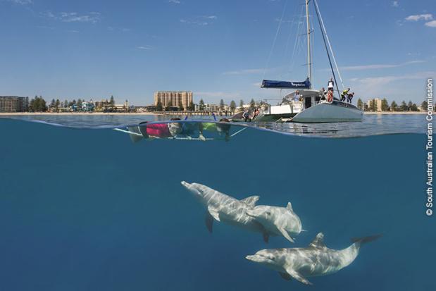 Adélaïde / Australie du Sud : activités en mer