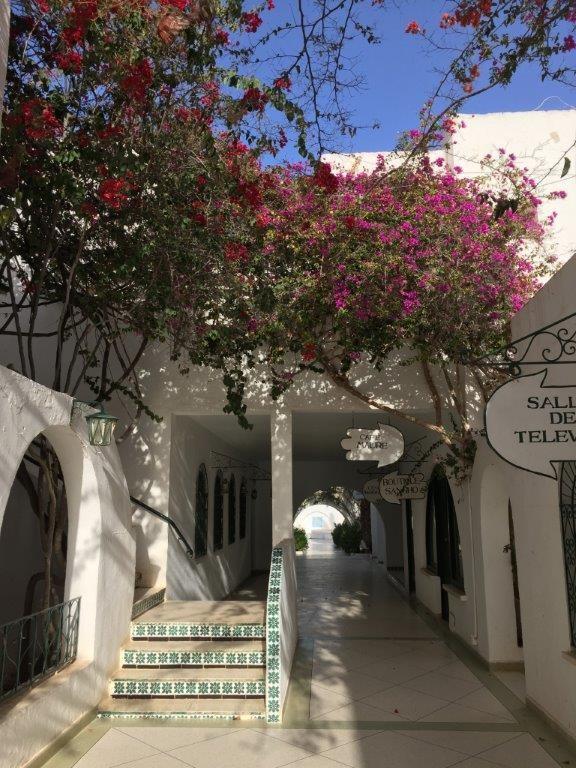 Le Sangho à Zarzis dans le sud tunisien, pionnier du concept des longs séjours adaptés au seniors. C Groupe Sangho.