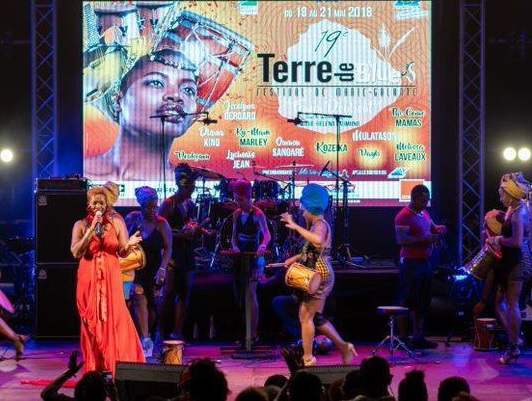 Du 7 au 10 juin 2019, se tiendra la 20e édition du festival Terre de Blues de Marie-Galante - DR : CTIG