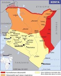 Kenya : des ventes en hausse en 2011 malgré le contexte géopolitique