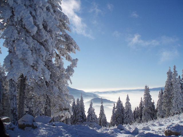 Les amoureux de poudre blanche veulent avoir de la neige à tout prix. C'est pourquoi leur choix se porte en premier lieu vers les grands domaines de haute altitude, où ils seront certains de trouver toute la poudreuse nécessaire pour s'adonner à leur passion  - Photo-libre.fr